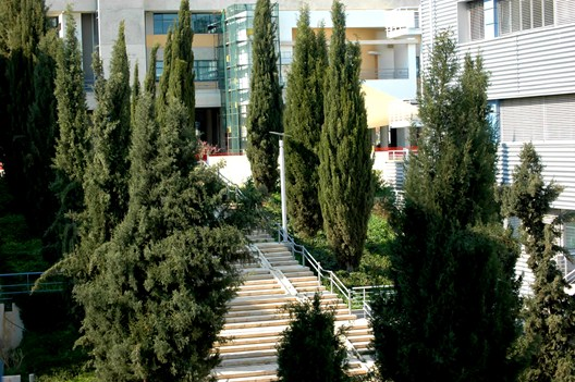 Courtyard between Computer Science and Economics and Management Departments